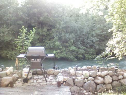 Backyard- 2